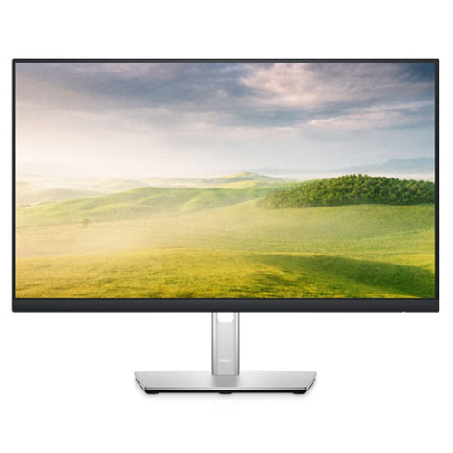 "24"" Flat Screen Display (Dell 24 USB-C Monitor P2422H)"